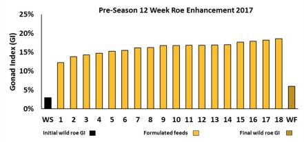 Pre Season Roe Enhancement 2017